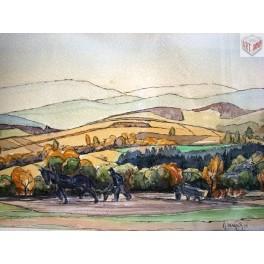 Oráč, 1951